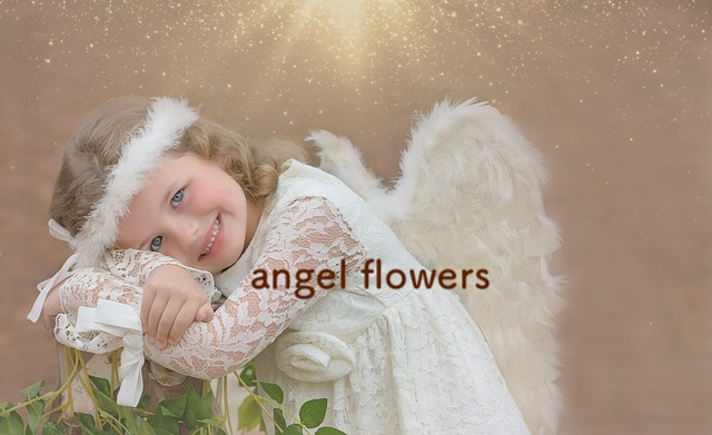 angel-flowers